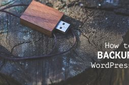 What's the Best Way to Backup Your WordPress Website?