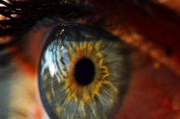 Pc Eye Pressure Alleviation: 8 Tips For Higher, Brighter Vision